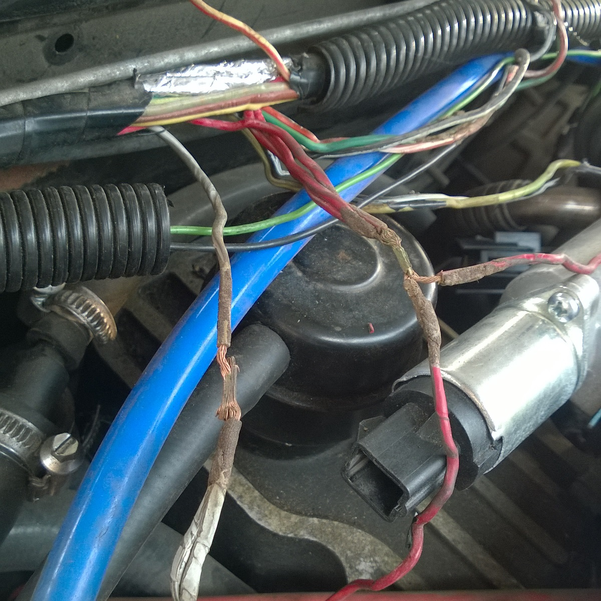 Iac Issues Scorp And Xr Maybe The Eec Iv Chief Knows How To Shielded Wire Harness Back Battery Replacing With New Replaced Diode Connector At While There Are Some Wires In